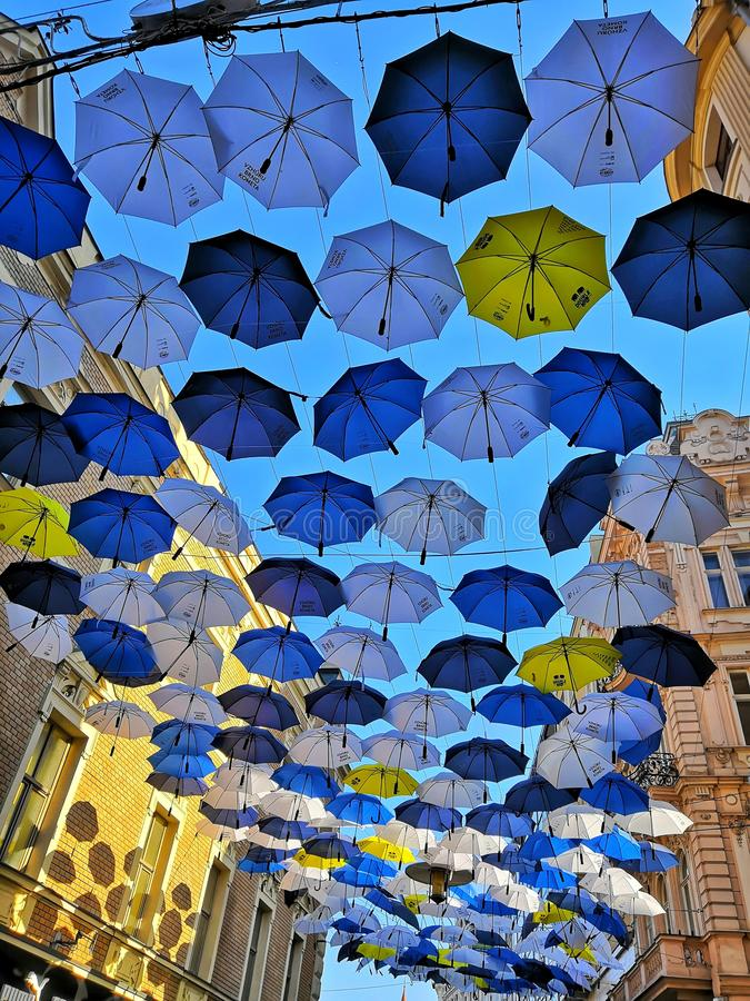 Umbrellas on the street in Brno stock photography