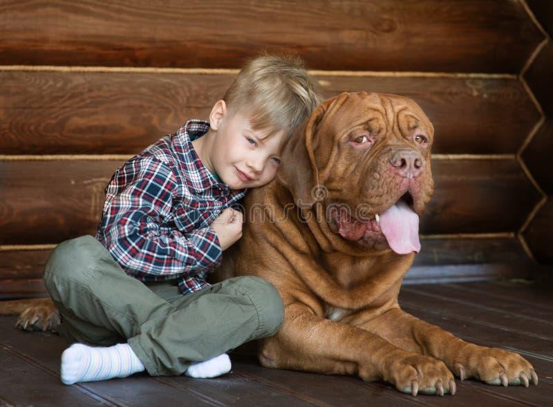 Umfassung des kleinen Jungen großer Bordeauxhund lizenzfreies stockfoto
