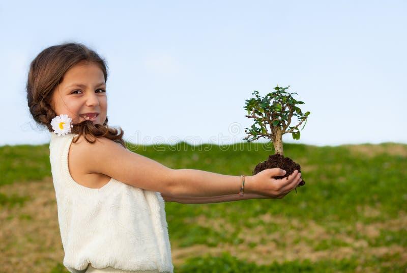 Umgebung und Natur stockbild