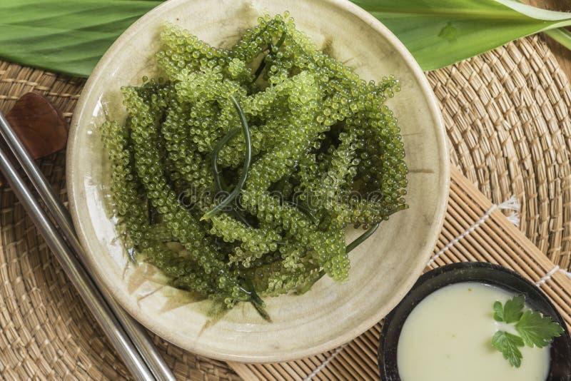 Umi-budou海草或绿色鱼子酱健康海鲜或海葡萄海草在板材 库存照片