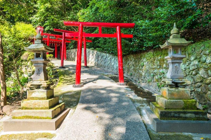 Umi Jigoku eller havshelvete i Beppu, Oita, Japan royaltyfri fotografi