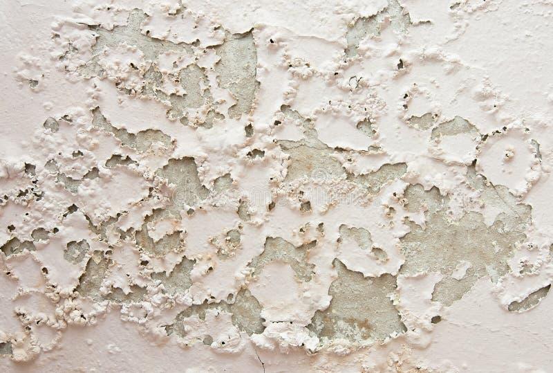 Umidade e molde na parede devendo molhar escapes imagem de stock