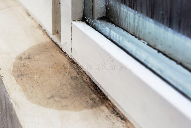 Umidade e molde - problemas em uma casa fotografia de stock royalty free