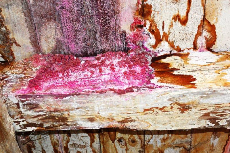 Umidità sulla vecchia struttura della casa fotografie stock libere da diritti