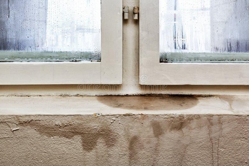 Umidità E Muffa - Problemi In Una Casa Immagine Stock - Immagine di ...