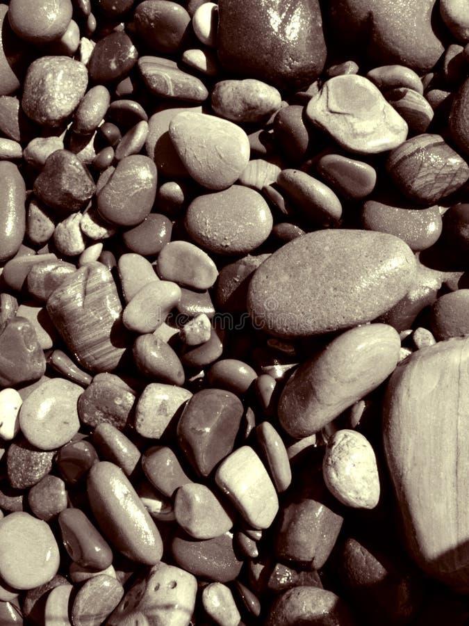 Umido E Pietre Della Spiaggia Di Sandy Fotografia Stock