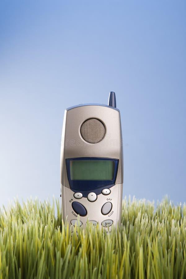 umieścić naziemny trawa kabel telefonu fotografia royalty free