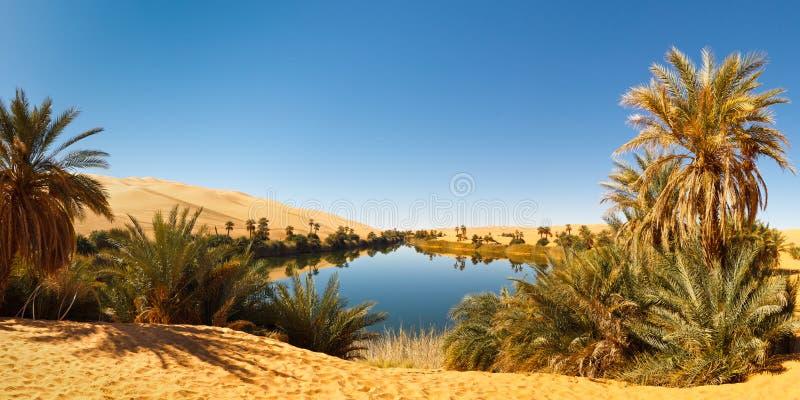 Umm al-Ma Lake - Desert Oasis - Sahara, Libya stock photos