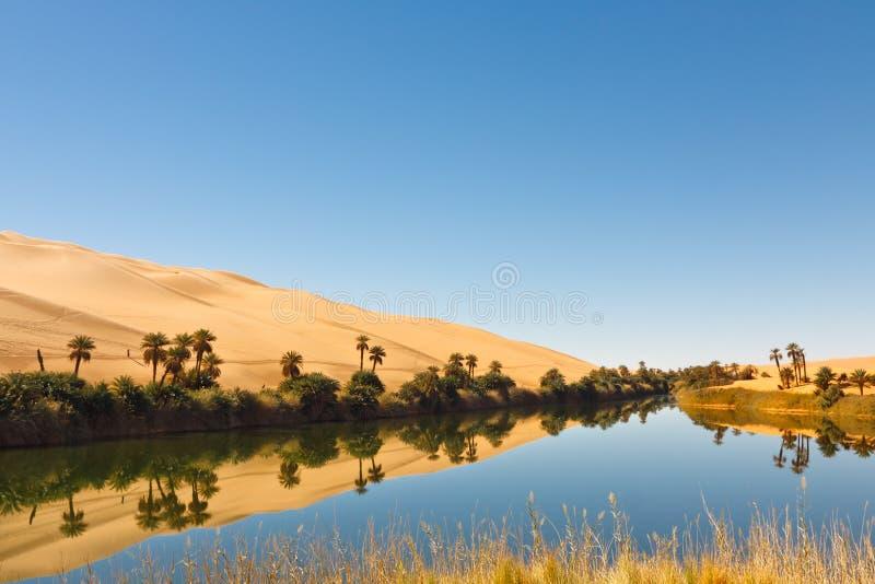 Download Umm Al-Ma Lake - Desert Oasis - Sahara, Libya Stock Photos - Image: 18814563