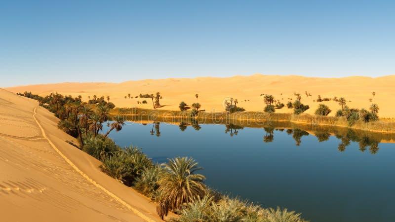 Umm al-Ma Lake - Desert Oasis, Sahara, Libya. Umm al-Ma Lake - Idyllic oasis in the Awbari Sand Sea, Sahara Desert, Libya royalty free stock images