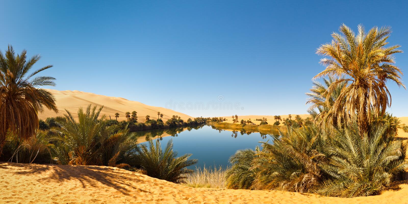Umm Alma See - Wüsten-Oase - Sahara, Libyen stockfotos
