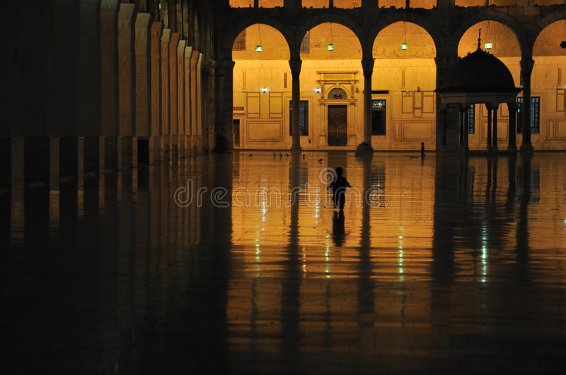 Ummayad Mosque at Night royalty free stock images