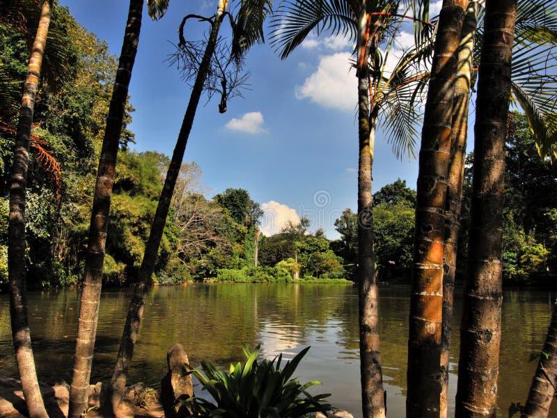 Umong-lago di Wat in Chiang Mai fotografie stock libere da diritti