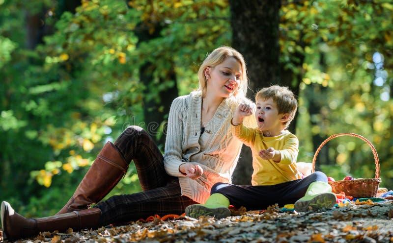 Umore della sorgente Giorno felice della famiglia tempo soleggiato Alimento sano Amore materno il suo piccolo bambino Picnic dell fotografie stock