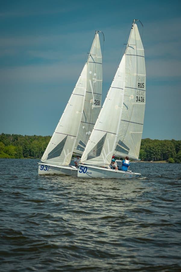 Umore di estate: vele bianche contro il cielo blu immagini stock libere da diritti