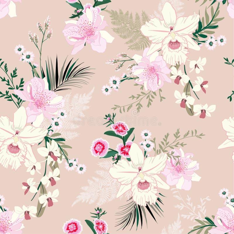 Umore tropicale dell'orchidea del fiore floreale molle e delicato del giardino, modello senza cuciture nella progettazione di vet illustrazione di stock