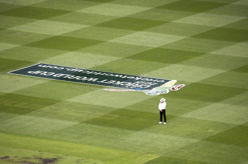 Umpire stands alone in cricket match at MCG royalty free stock images