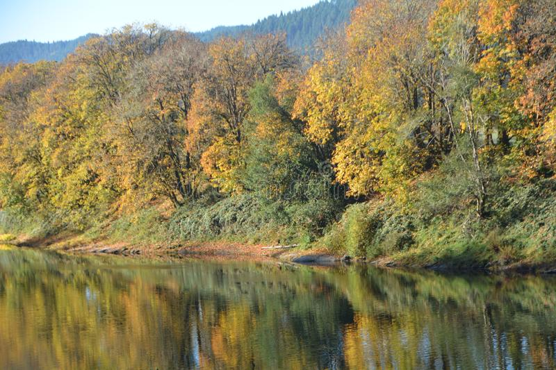 Autumn reflections of a forest on the Umpqua River in Oregon. The Umpqua River on the Pacific coast of Oregon in the United States is approximately 111 miles 179 stock photos