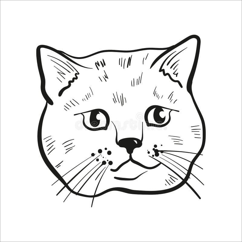 Umrissene Katzenhauptzeichnung Schottische gerade Katzenillustration stock abbildung