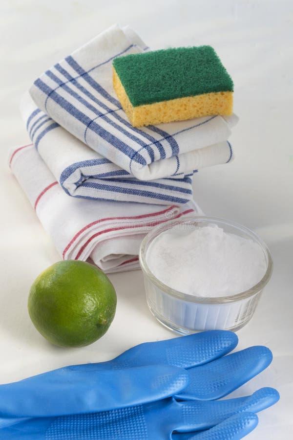 Umweltfreundliche natürliche Reiniger mit einem Reinigungshandschuh lizenzfreie stockfotografie