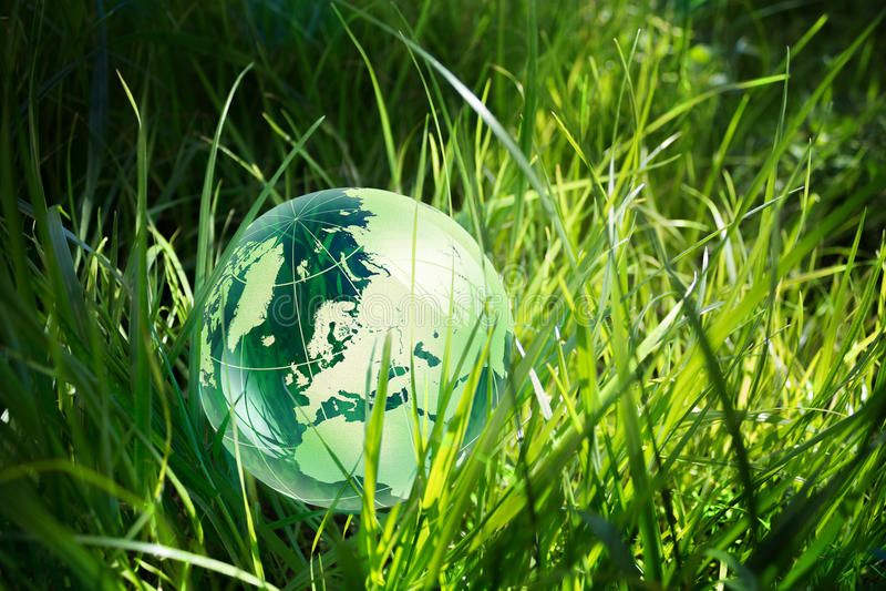 Glaskugel im Gras stockfoto