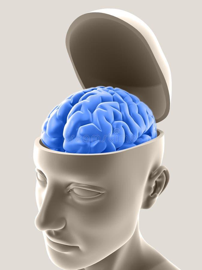 umysł otwarty ilustracji