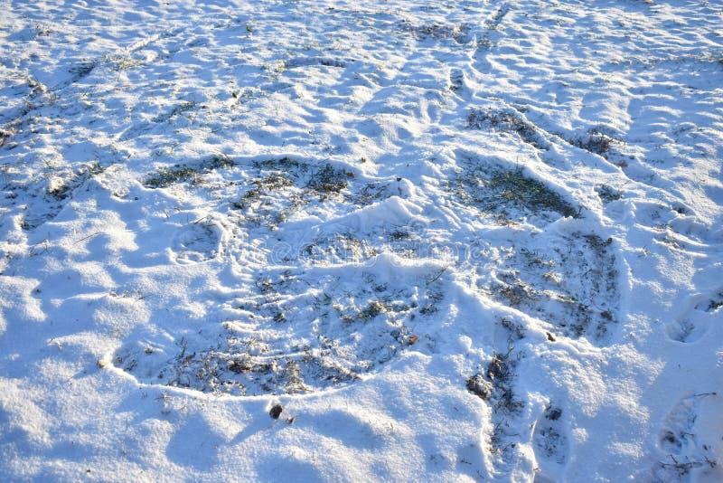 Un ángel de la nieve hecho sin mucha nieve fotos de archivo
