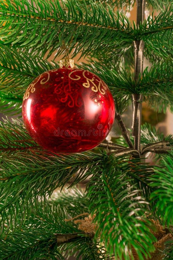 Un árbol de navidad adornado con una bola de cristal roja Una bola transparente del ` s del Año Nuevo Fondo hermoso de la Navidad imagen de archivo