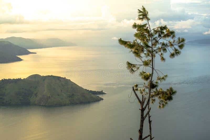 Un árbol en el medio de la opinión de oro de la salida del sol de Toba del lago imagen de archivo