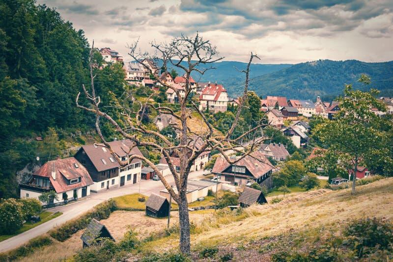 Un árbol muerto en un pueblo de montaña alemania Forest Toned negro imágenes de archivo libres de regalías