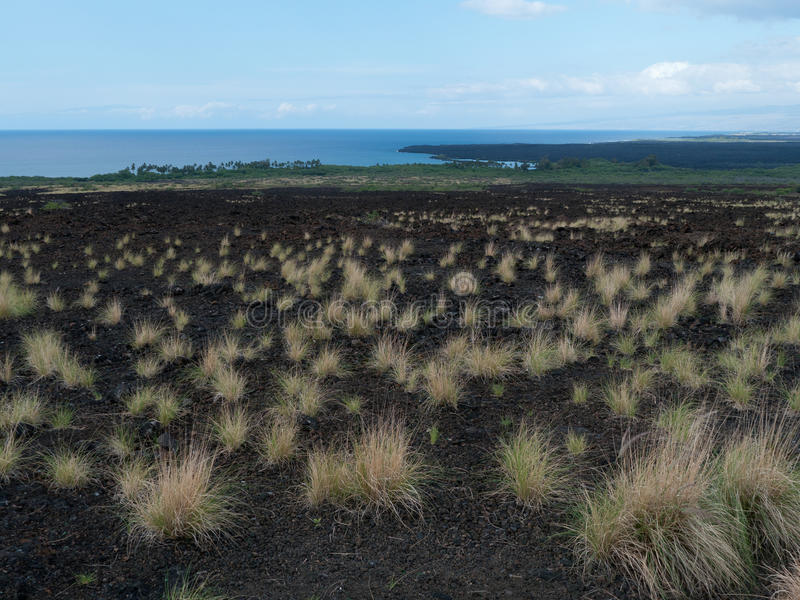 Un écoulement de lave plus ancien Maui Hawaï image libre de droits