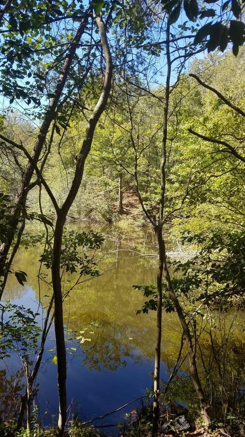 Un étang appalachien caché images stock
