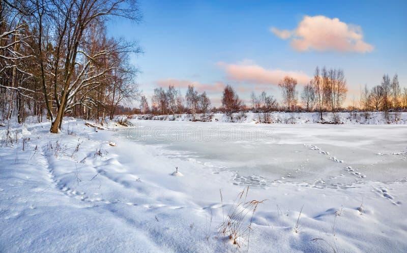 Un étang congelé en parc avec les arbres couverts de neige photo stock