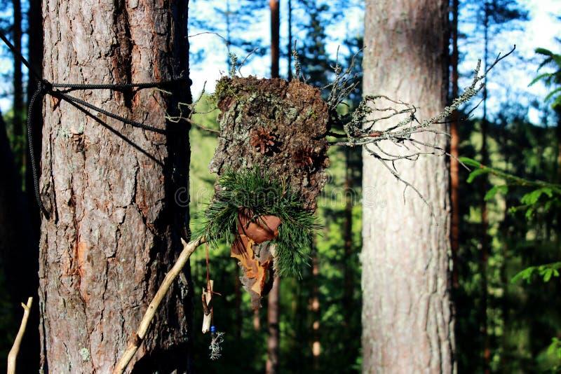 Un ídolo del bosque de los conos del palillo y del pino de la corteza hechos para engatusar las bebidas espirituosas paganism imagen de archivo libre de regalías