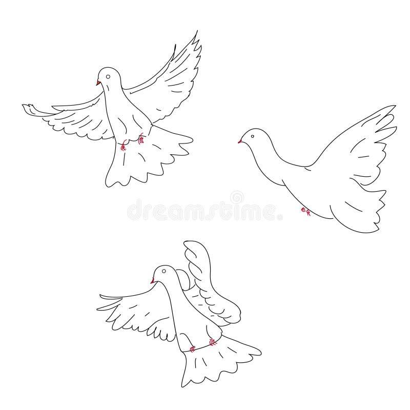 Un abbozzo di tre colombe royalty illustrazione gratis