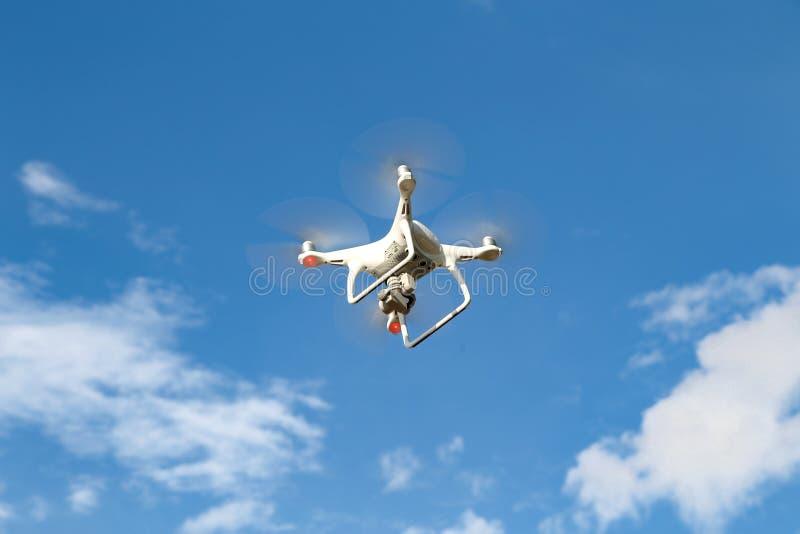 Un abejón del vuelo fotos de archivo