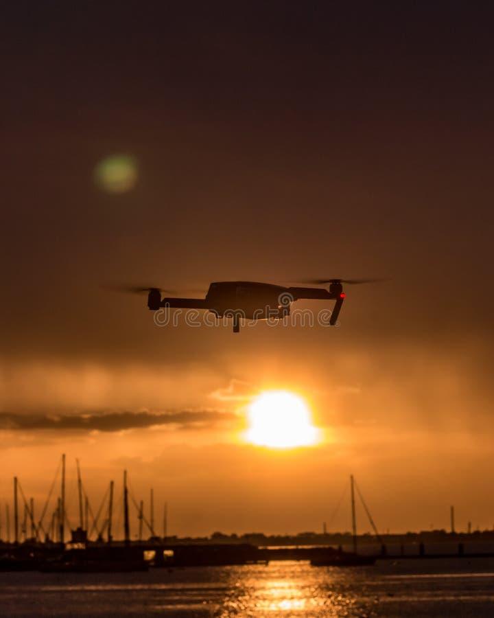 Un abejón que asoma en el cielo con una puesta del sol hermosa en la parte posterior fotografía de archivo
