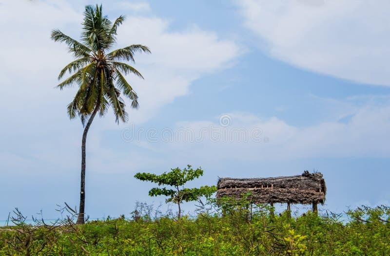 Un abri exp?dient sur la plage d'une ?le tropicale photos stock