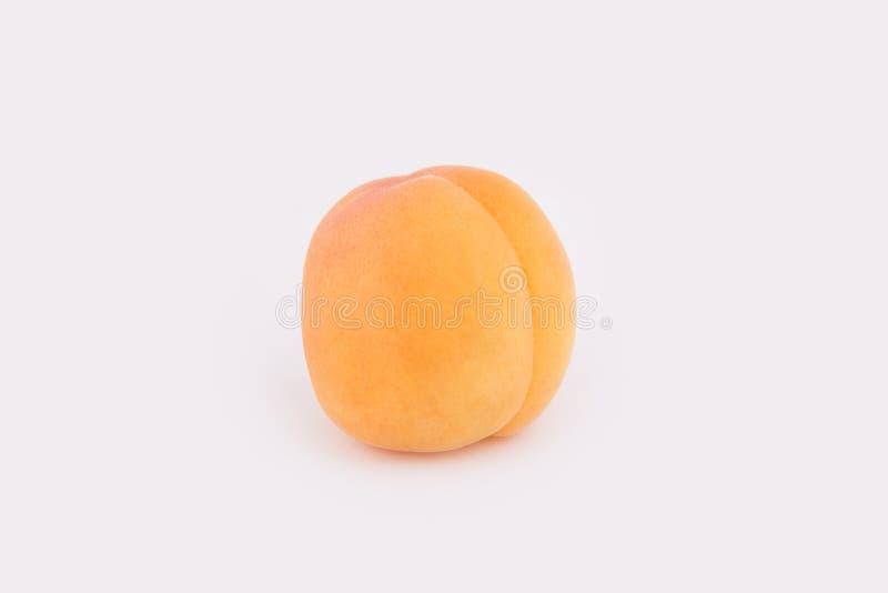 Un abricot du côté d'isolement sur un fond blanc photos stock