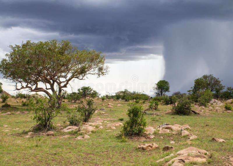Un acquazzone dell'acqua pesante in Africa fotografia stock