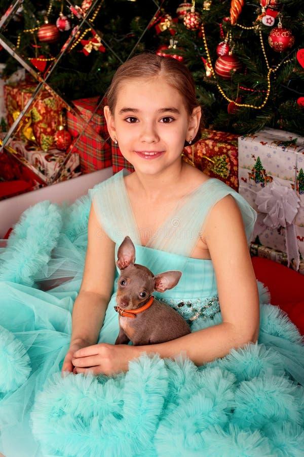 Un adolescente lindo de la muchacha en un vestido enorme con un mini perro que se sienta cerca del árbol de navidad en la Noche V imagen de archivo
