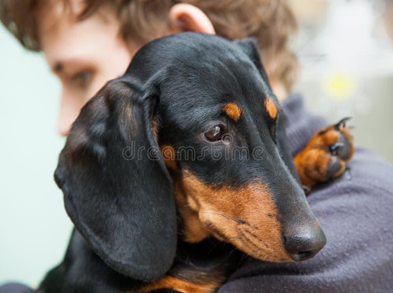 un adolescente y el suyo animal doméstico triste fotografía de archivo