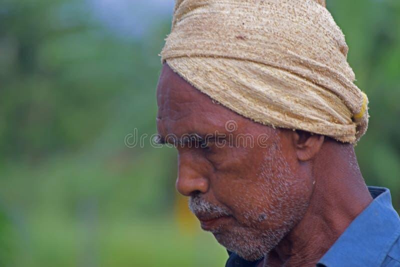 Un agriculteur photographie stock libre de droits