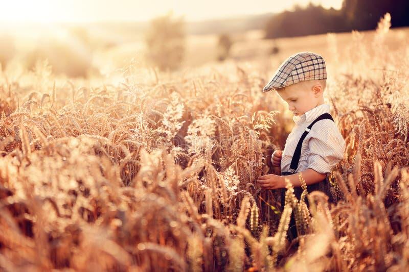 Un agriculteur de petit garçon se tient dans le domaine du grain image stock
