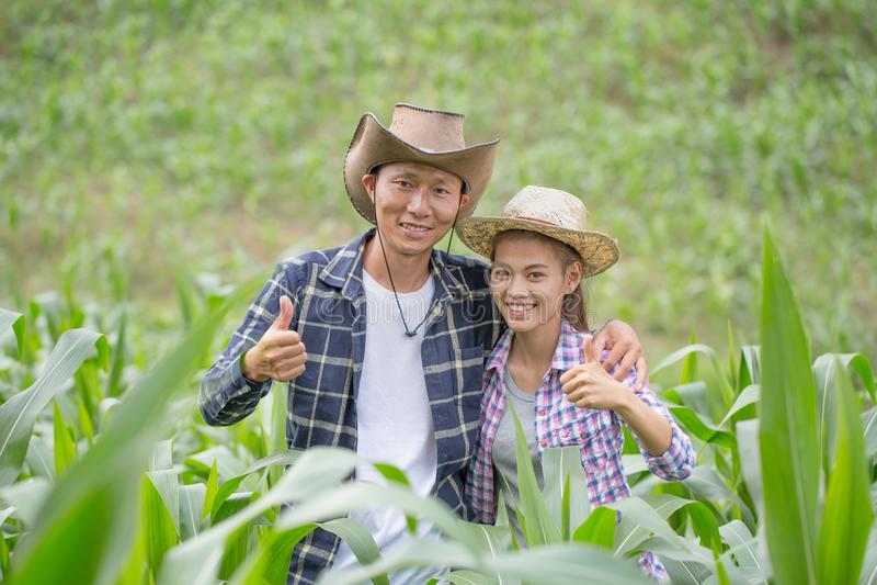 Un agriculteur et son épouse se tenant dans leur champ de maïs heureusement photos libres de droits