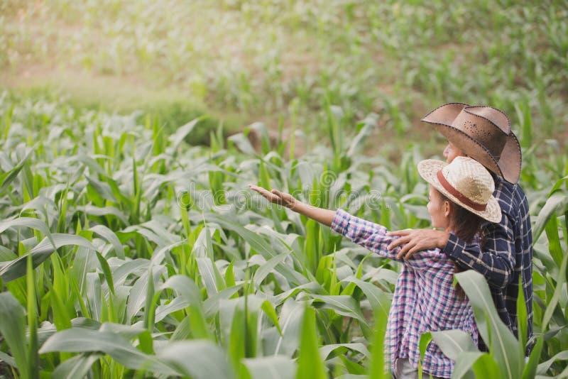 Un agriculteur et son épouse se tenant dans leur champ de maïs heureusement images stock