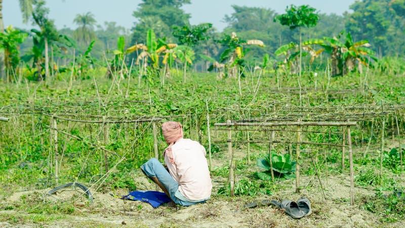 Un agriculteur mangeant le déjeuner à son champ photo libre de droits