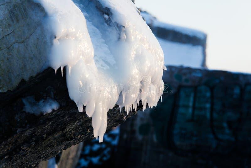 Un agua salada congelada hermosa en la playa del mar Báltico Formaciones de hielo en invierno foto de archivo