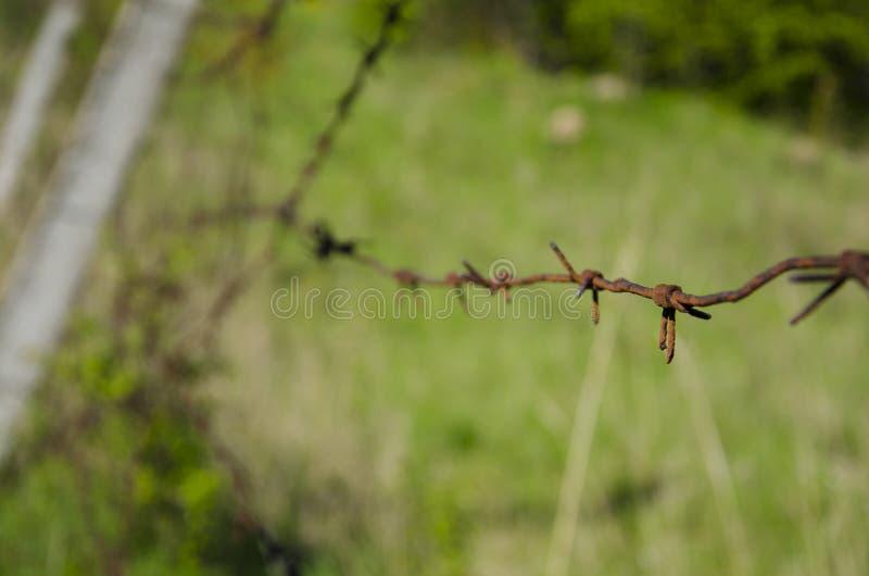 Un alambre de púas viejo en el territorio abandonado fotografía de archivo libre de regalías