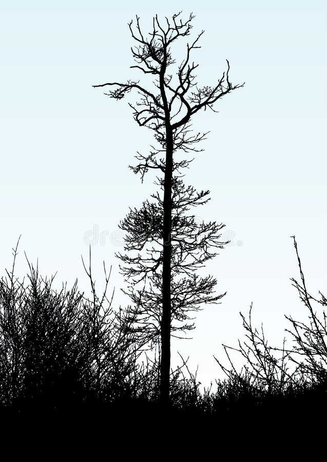 Un albero illustrazione vettoriale
